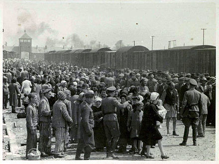 Black and white image of many Hungarian Jews by rail lines with Nazi guards