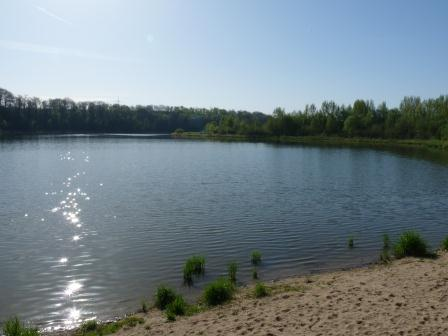 Picture of reservoir surrounded by trees with a little beach