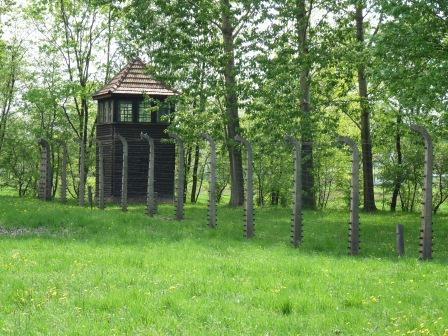 Grassy area surrounded by a fence with a guard tower and trees beyond.