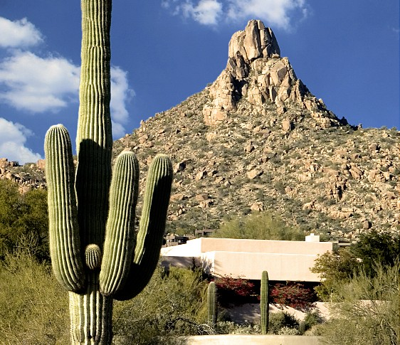 Pinacle Peak with Saguaro catus in the foreground