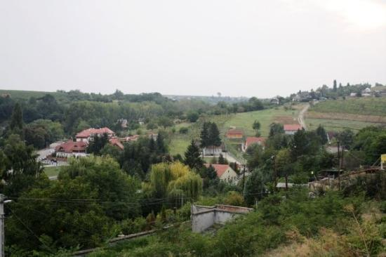Looking over the valley from the hillside, small houses and trees visible
