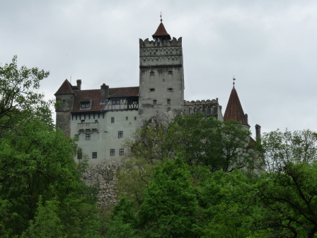 Castle above trees.  1 tower.  Grey with reddish roof.