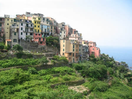 Many coloured houses atop a green slope