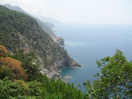 Steep cliffs covered in trees alongside the ocean