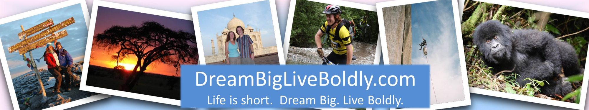 Dream Big Live Boldly
